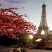 """Фотошторы """"Красные листья на фоне Эйфелевой башни"""""""
