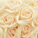 ФотоШторы Фон из роз