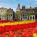 ФотоШторы Цветы в Голандии