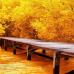 ФотоШторы Осенний мостик