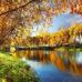 ФотоШторы Осень золотая