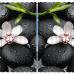 """Фотошторы Широкие """"Орхидея на камне"""""""