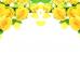 ФотоШторы Жёлтые розы